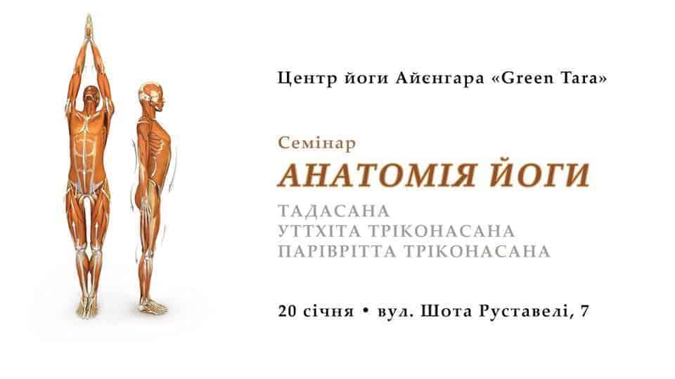 Анатомія Асан Йоги